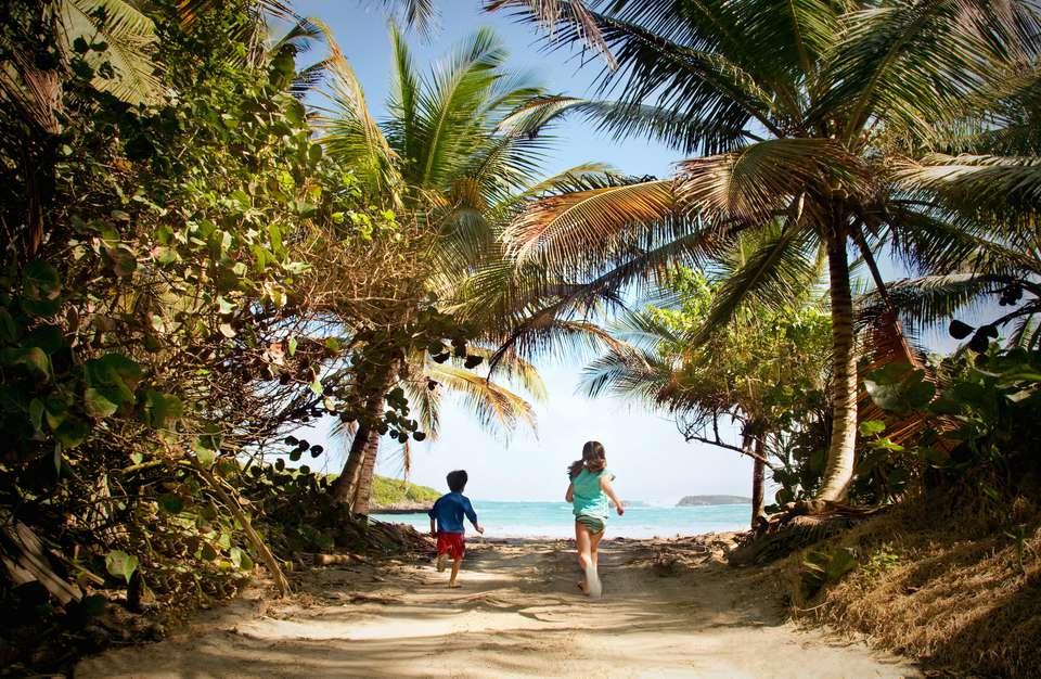 Boy and Girl Running to Beach Through Tree Path