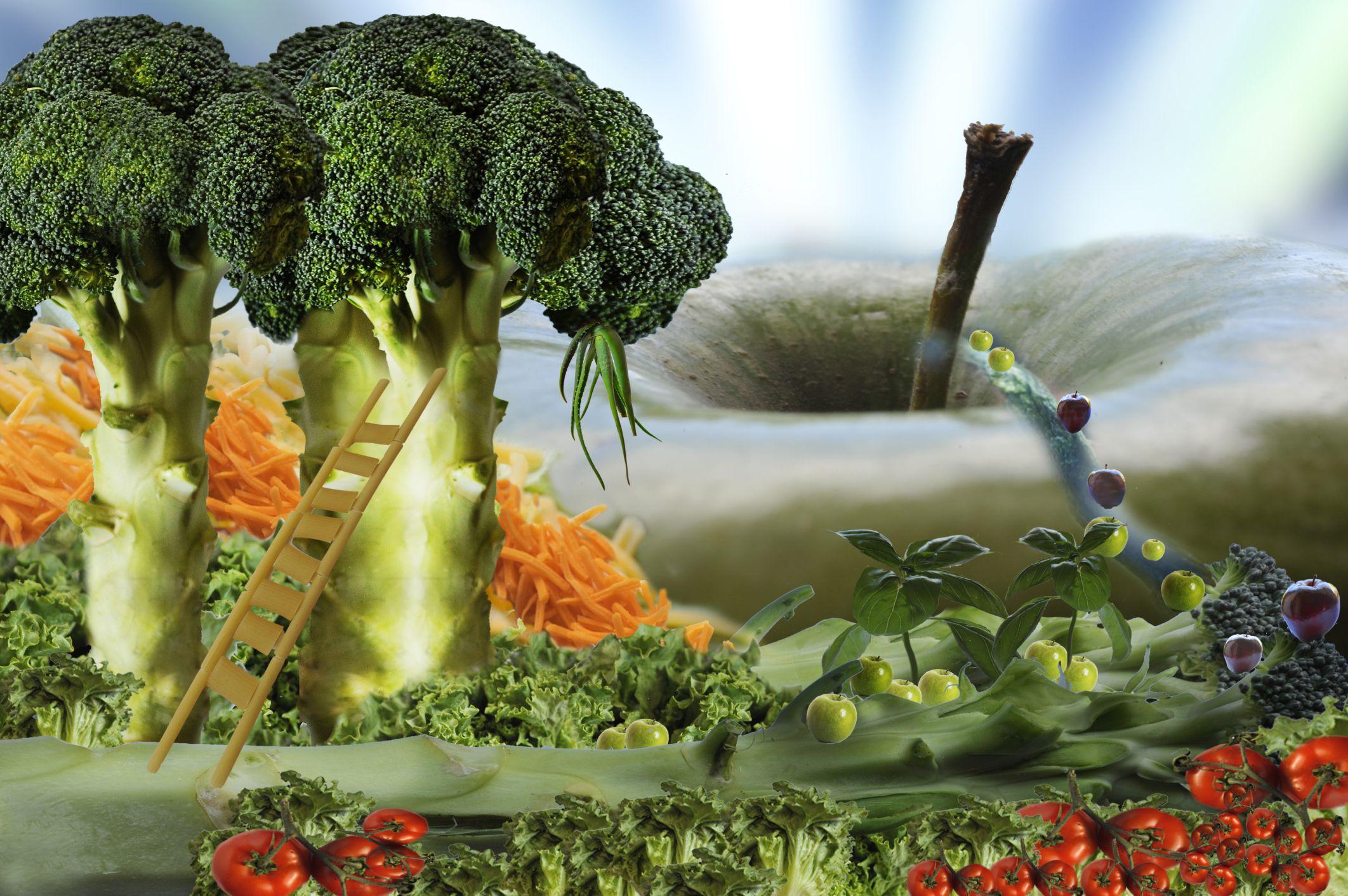 Alimentos que previenen el c ncer - Alimentos previenen cancer ...