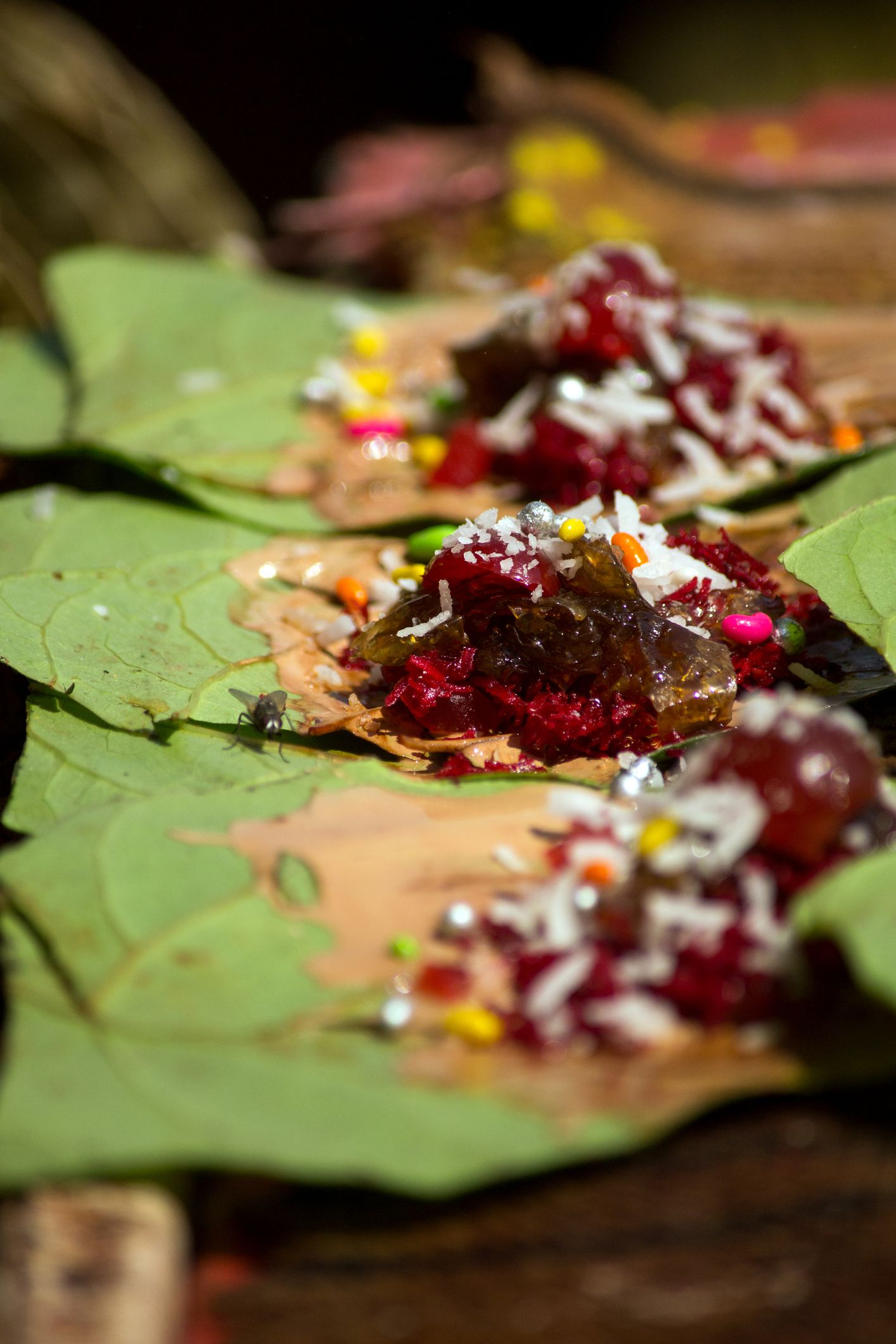 What is Paan Indian Food and Why Is It So Popular?