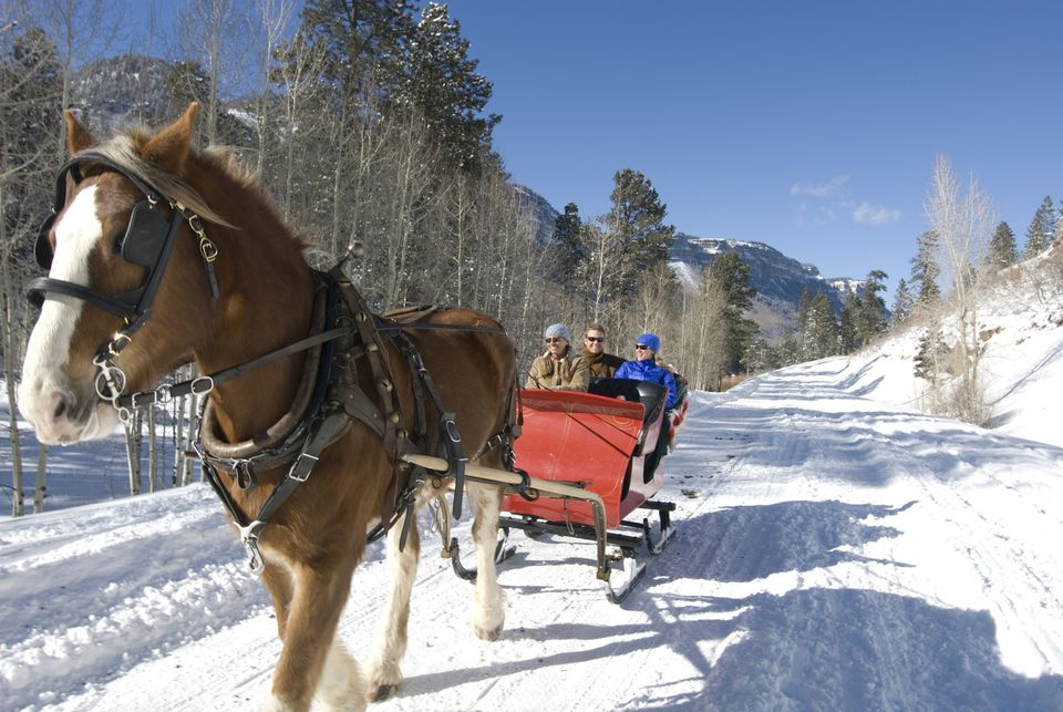 Three people on a horse-drawn sleigh.