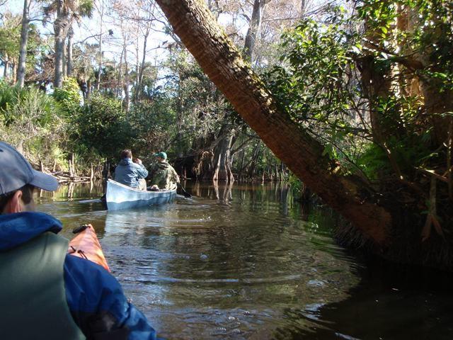 Loxahatchee Canoe
