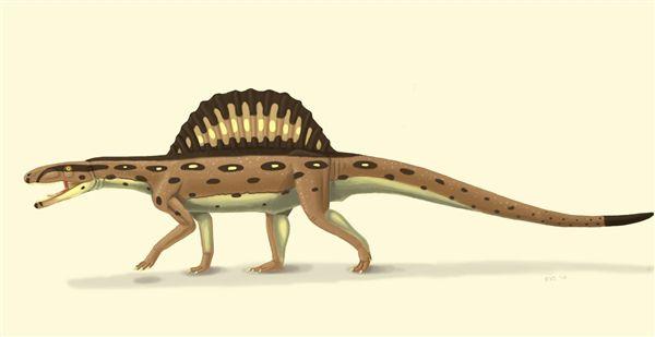 xilousuchus