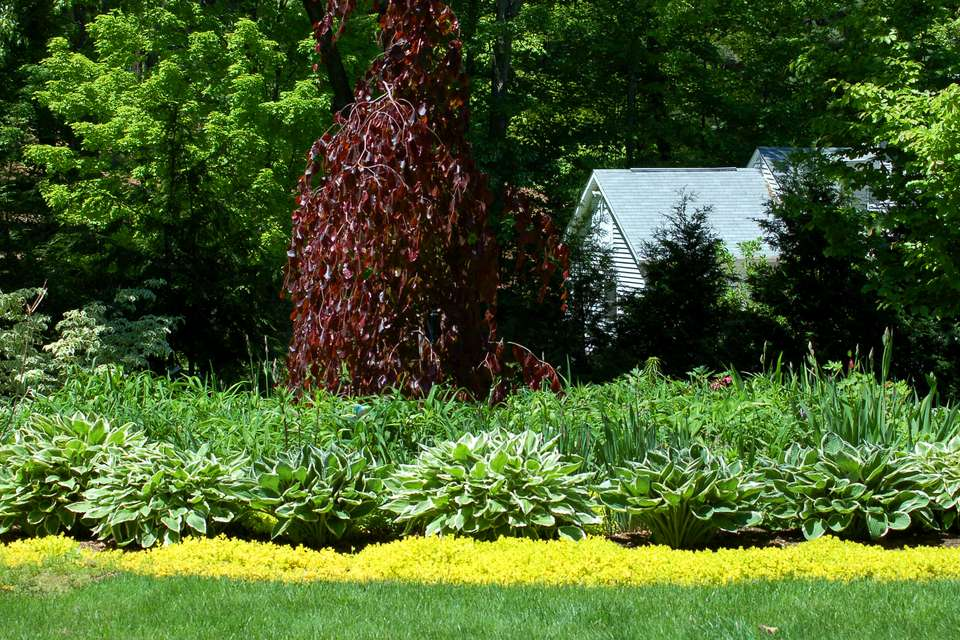 Flower borders ideas to make your landscaping sizzle for Easy to maintain garden borders