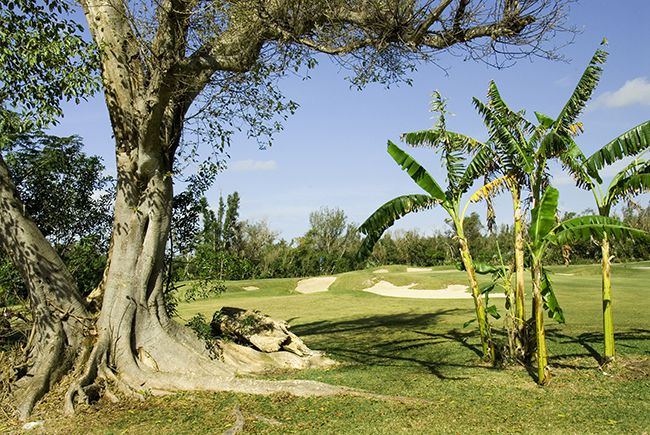The 3rd Hole - Lucayan Golf Course - Freeport Bahamas