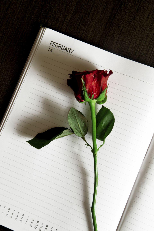 ValentinesGetty.jpg