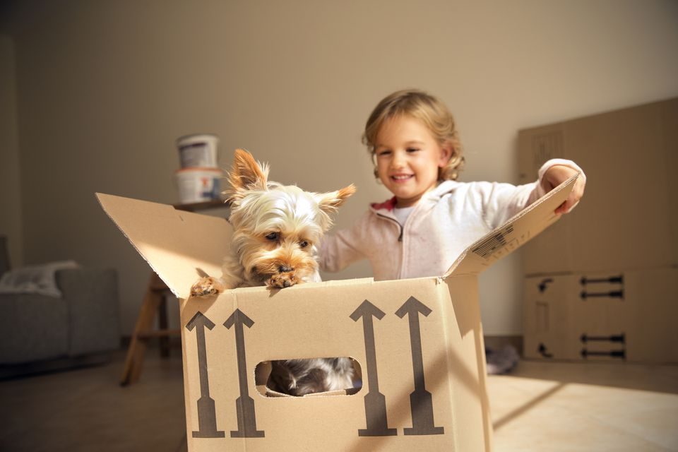 Smiling girl with dog inside cardboard box