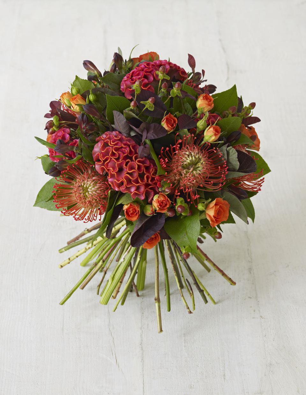 Fall wedding flower gallery alstromeria roses protea and celosia bouquet izmirmasajfo Choice Image