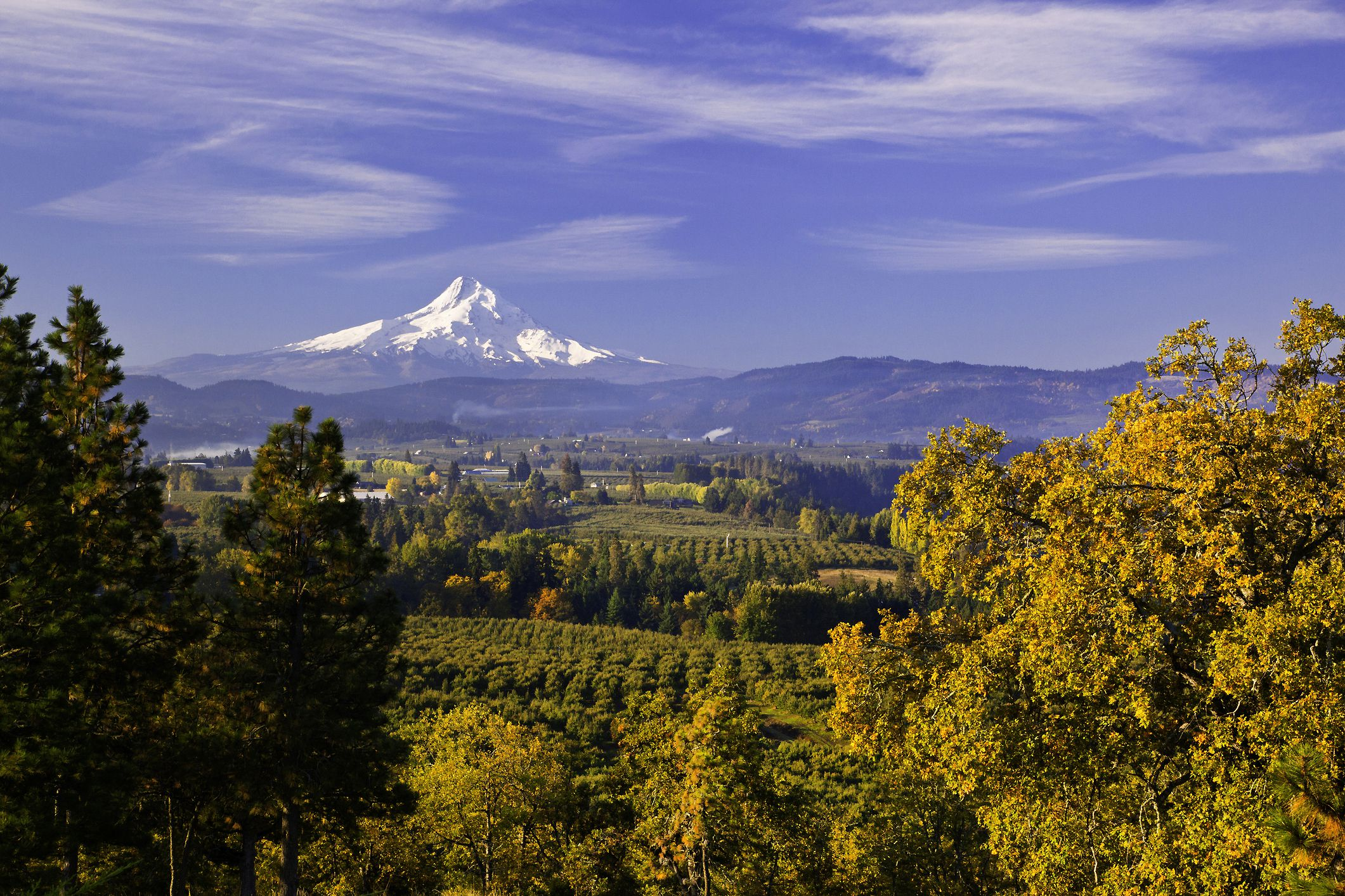 The Best Spots For Viewing Fall Foliage In The Pacific