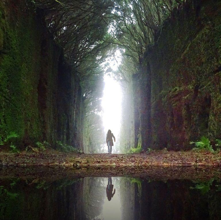 I got Spiritual Leanings. Quiz: Am I a Lightworker?