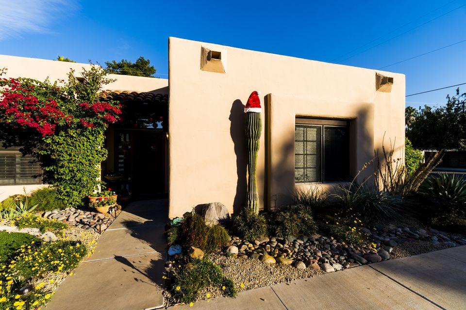 A Seguaro Cactus adorned with a Santa Hat