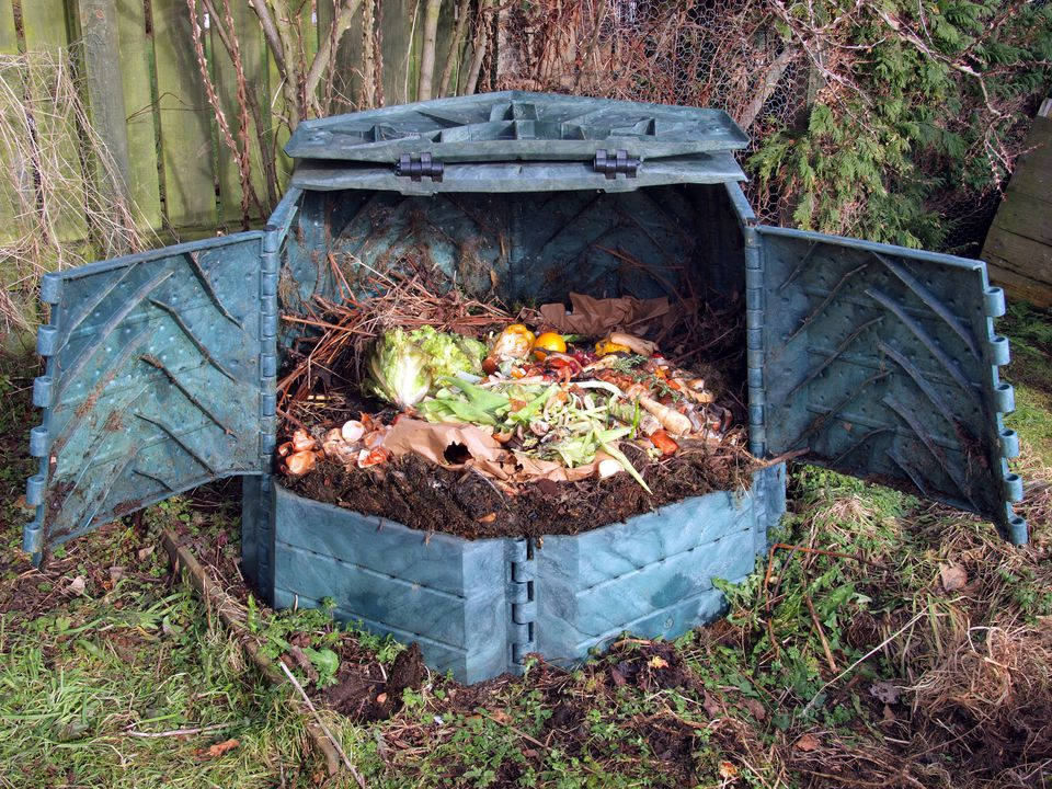 Plastic compost bin with kitchen scraps in it.