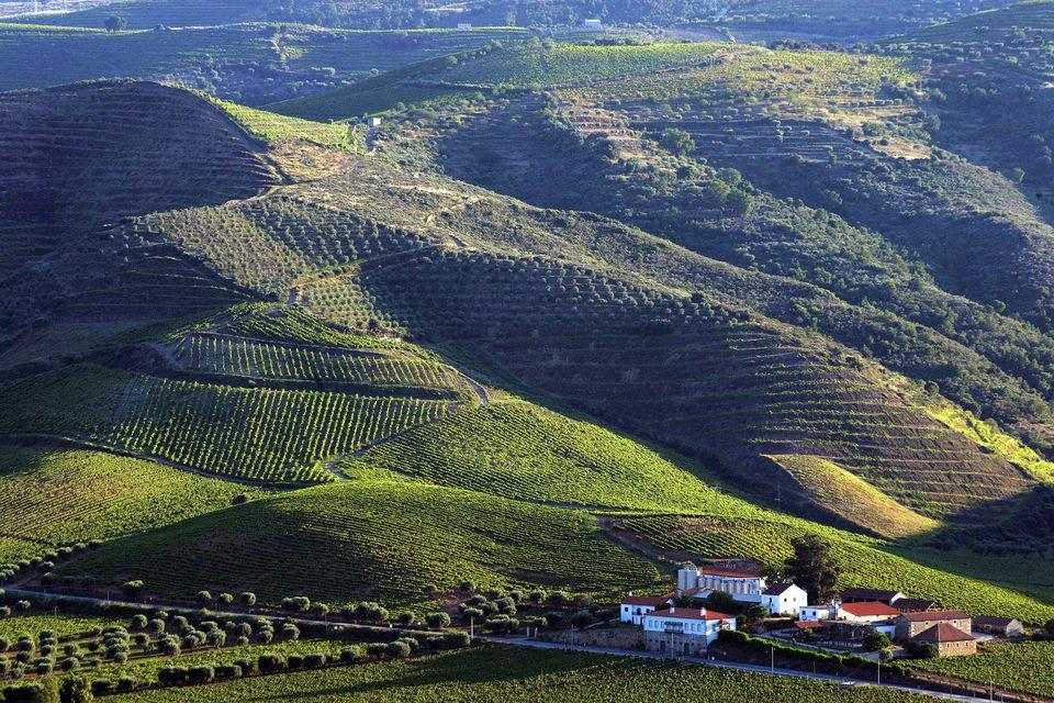 Foz Coa Valley in Portugal