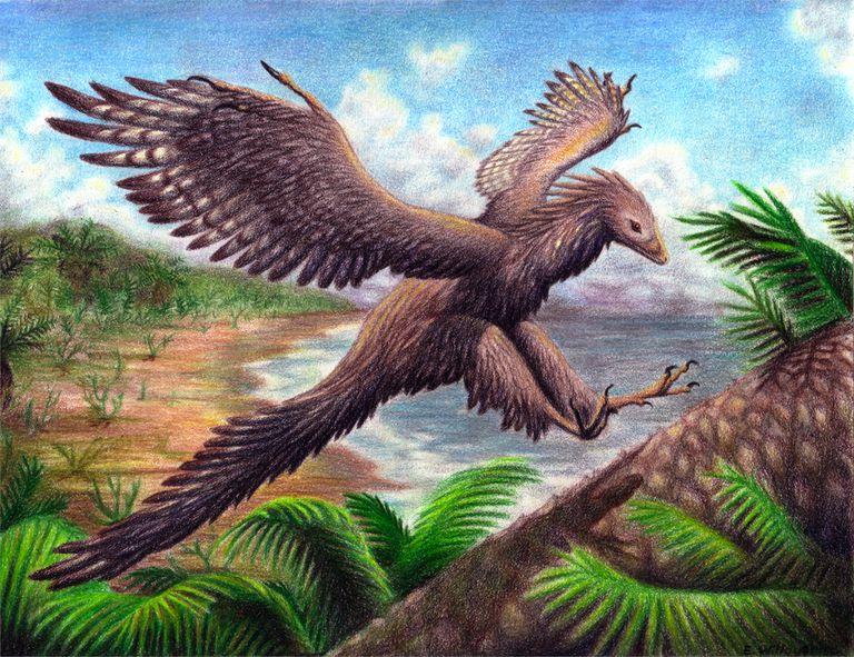Resultado de imagem para archaeopteryx
