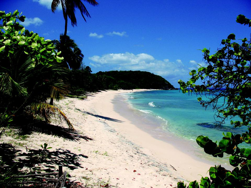 Vieux-Fort Beach, Guadeloupe