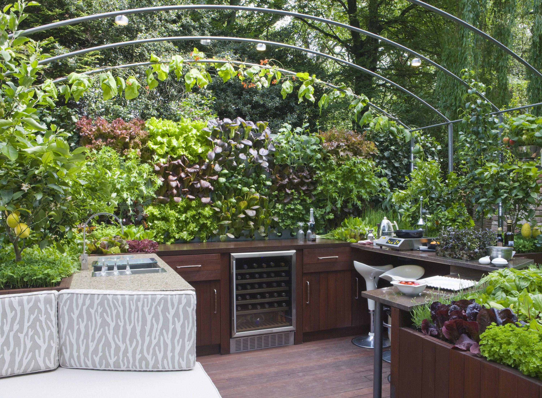 vertical garden history the best plants for walls