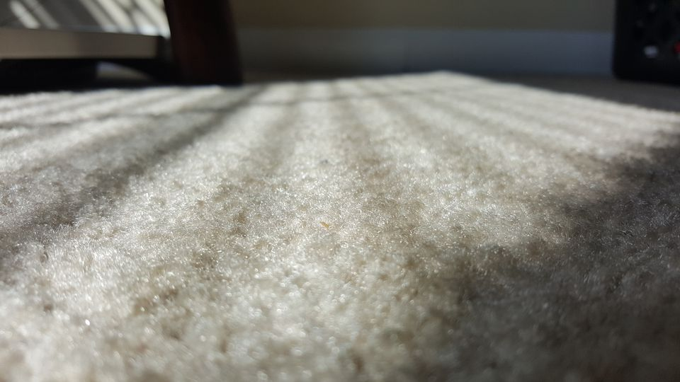 5 Tips For Buying Carpet On A Budget