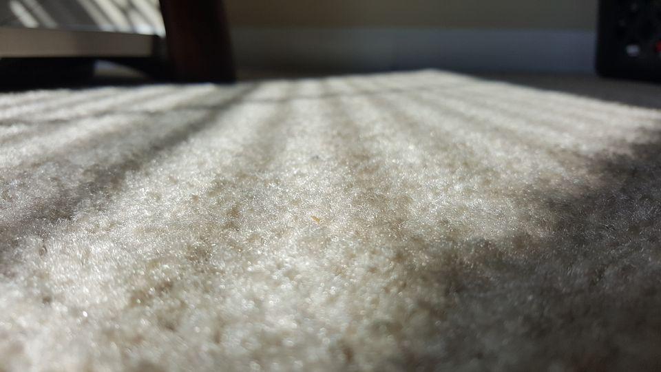Close-Up Of Carpet At Home