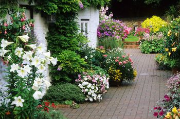 Designing A Cottage Garden - how to design a cottage garden