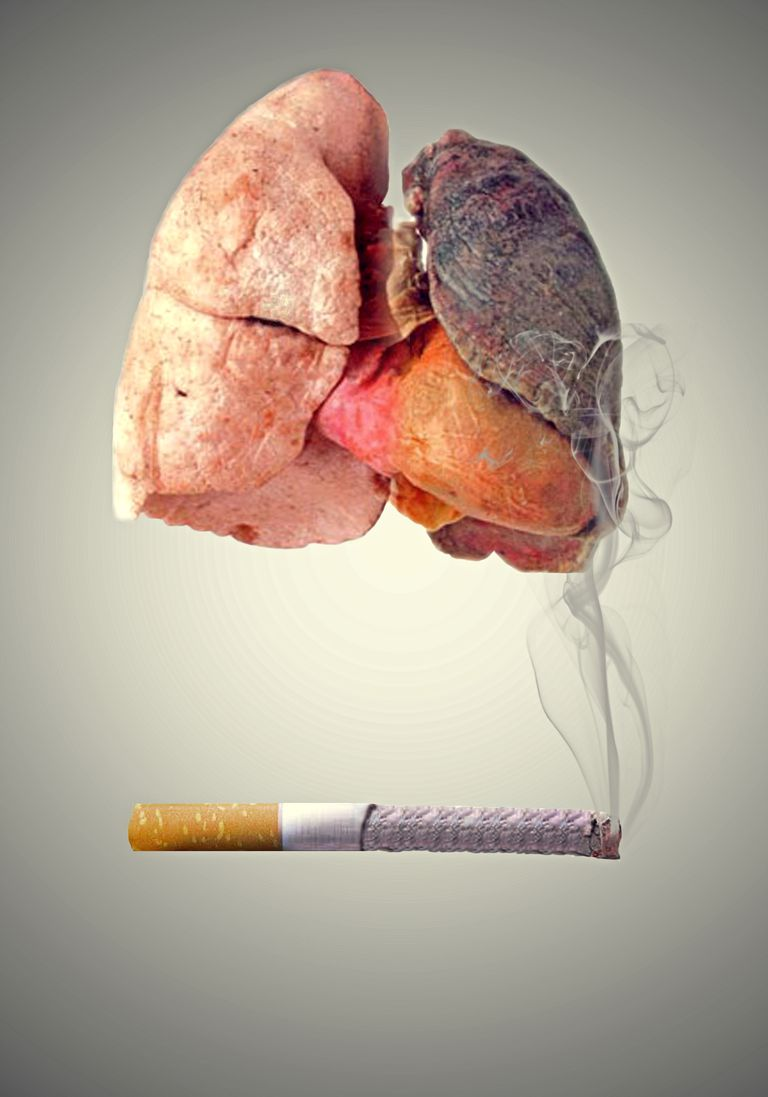 set of lungs with one side black with cigarette smoke beneath and the other side a healthy lung