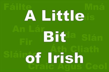 Common irish phrases and words you might need the irish words you should know before traveling to ireland m4hsunfo