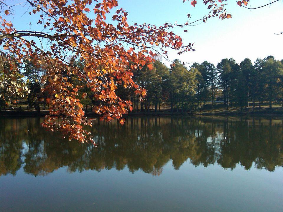 Fall at Lake Norman