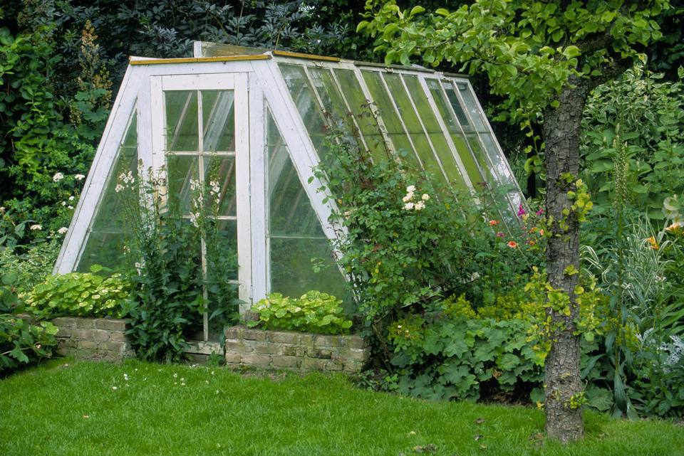 Greenhouse in garden