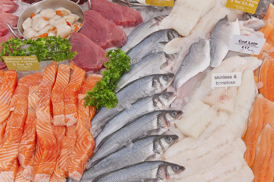 Display of fresh fish on supermarket counter