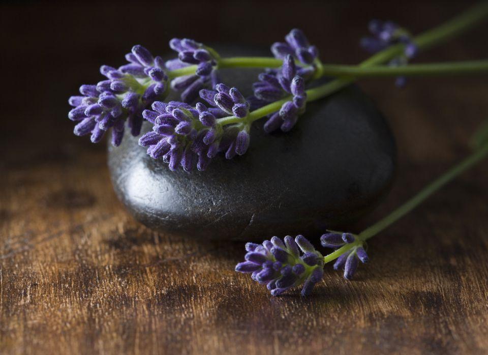 lavender feng shui tips