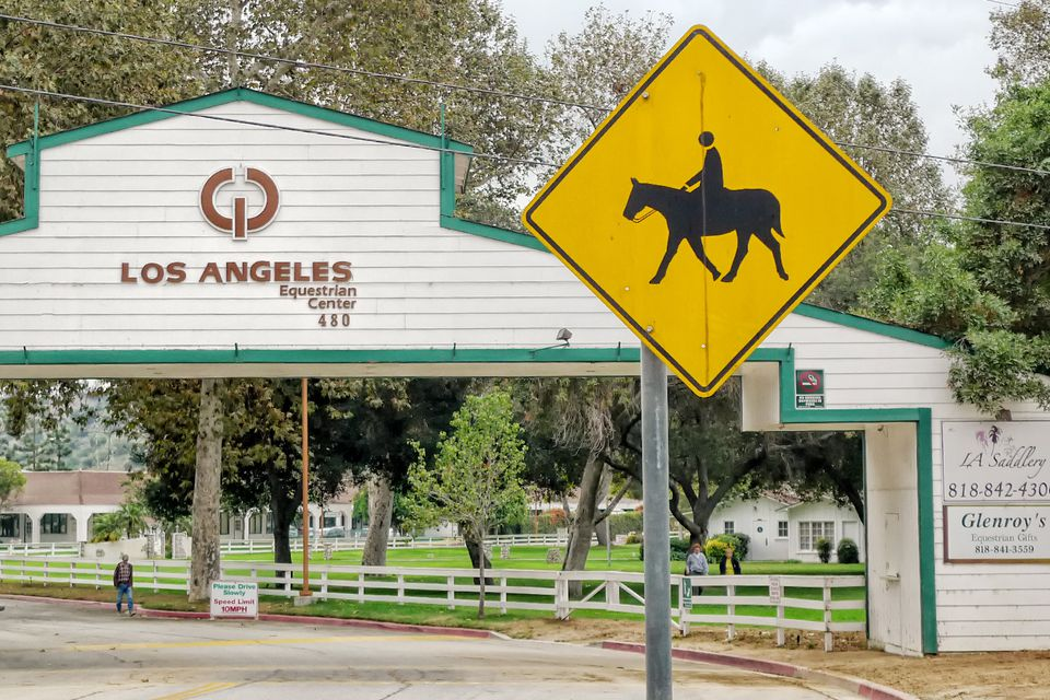 Horse Riding And Stables In Griffith Park