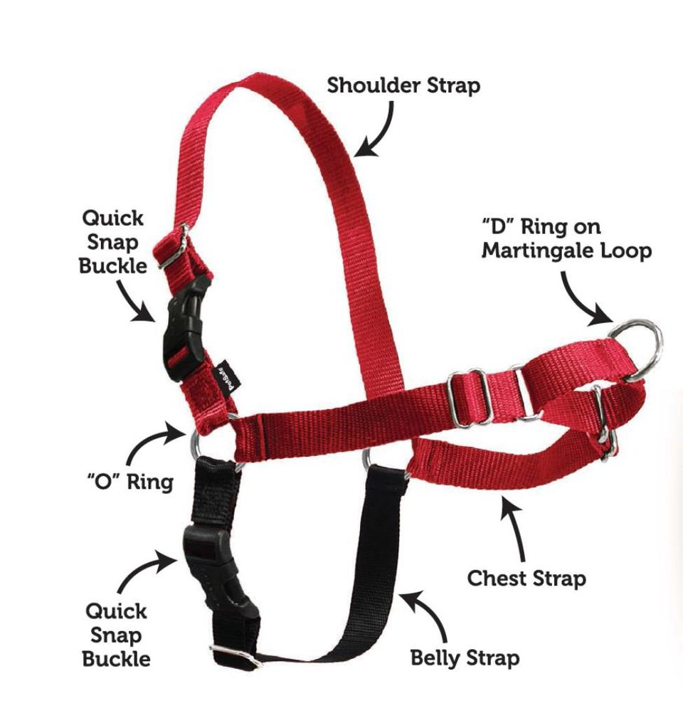 premier easy walk harness for dogs review
