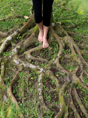 Barefoot WomanStanding on Roots of Tree