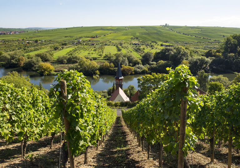 Germany, Lower Franconia, Vineyard near Kohler with view of chapel and Kreuzberg hill in background