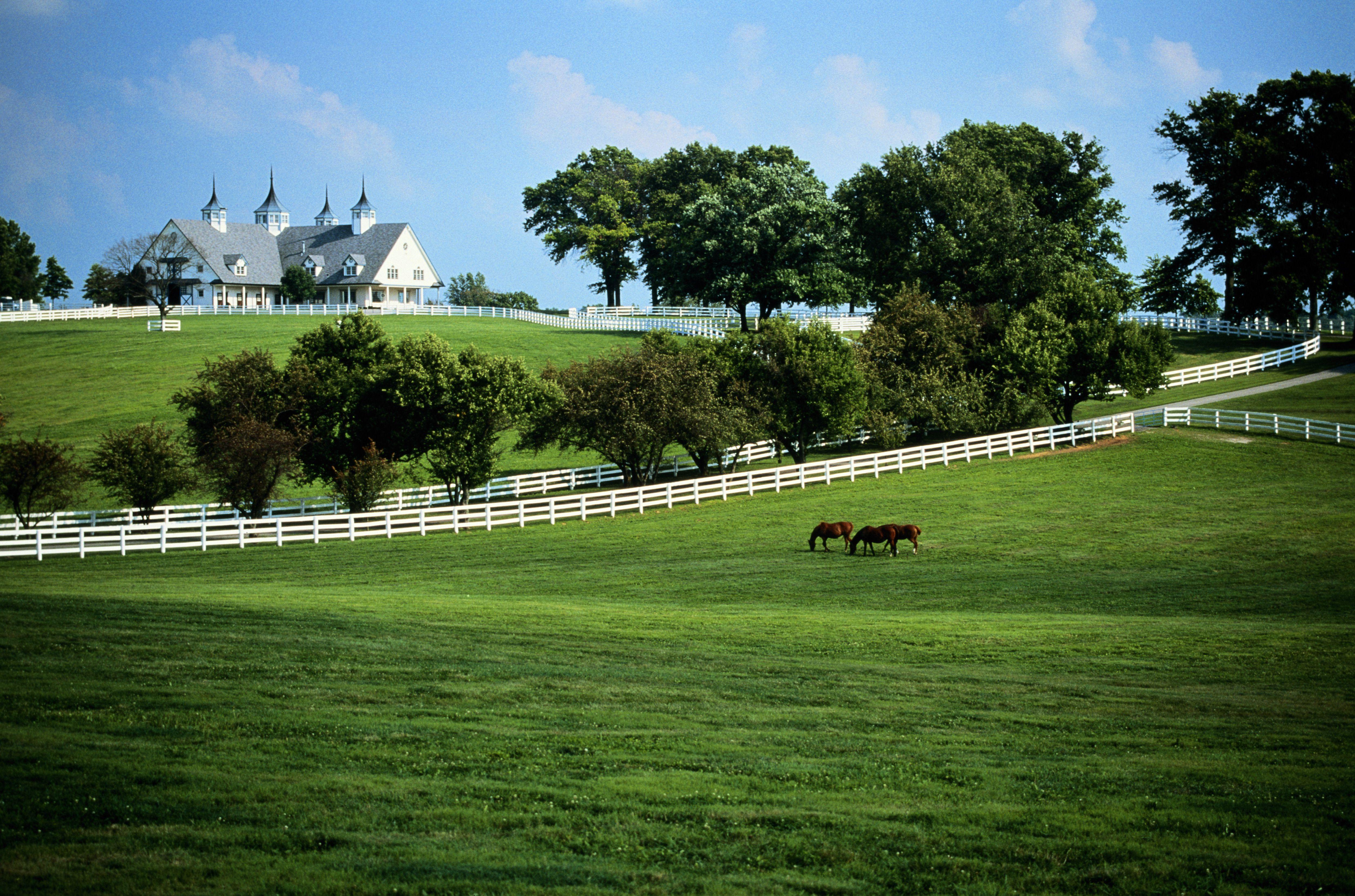 Overview of Pennsylvania Inheritance Tax Laws – Nebraska Inheritance Tax Worksheet