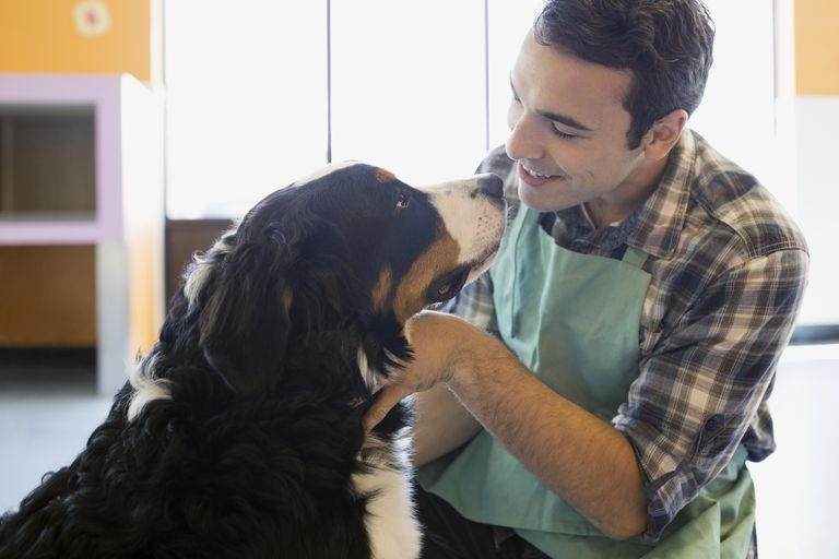 Man with apron petting large dog