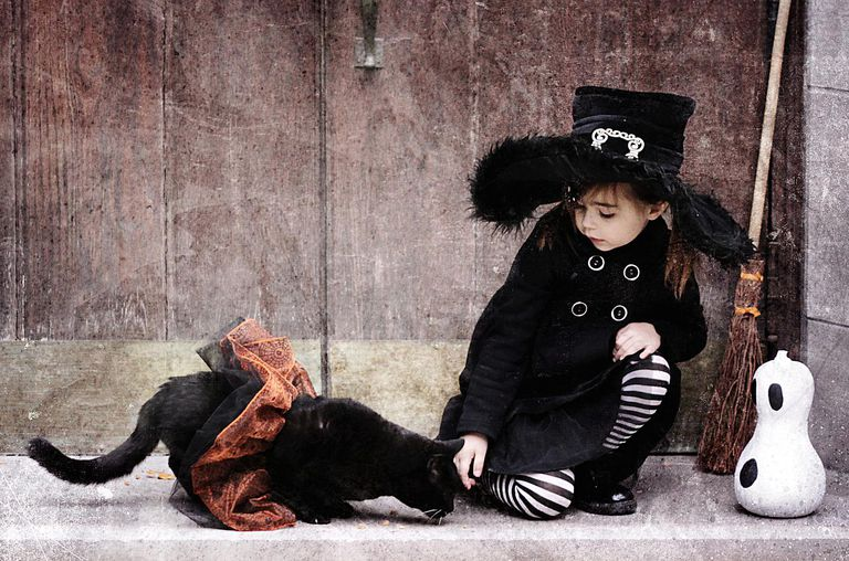 Little girl in Halloween witch costume petting black cat