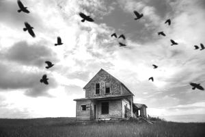 Black and white picture of birds flying over an old home