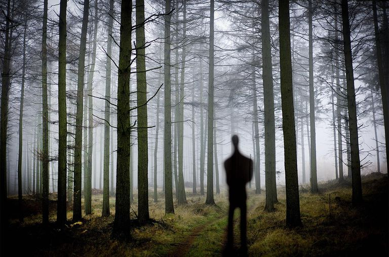 Silhouette of man in the forest.