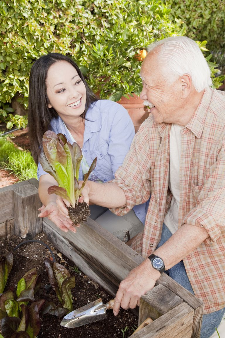 activities for seniors in the home