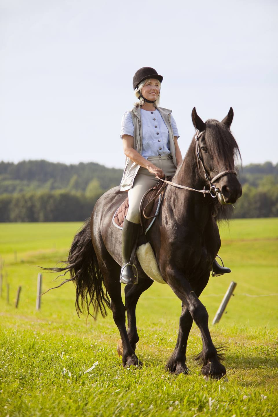 Horses may have originated in Arabia and central Asia, DNA