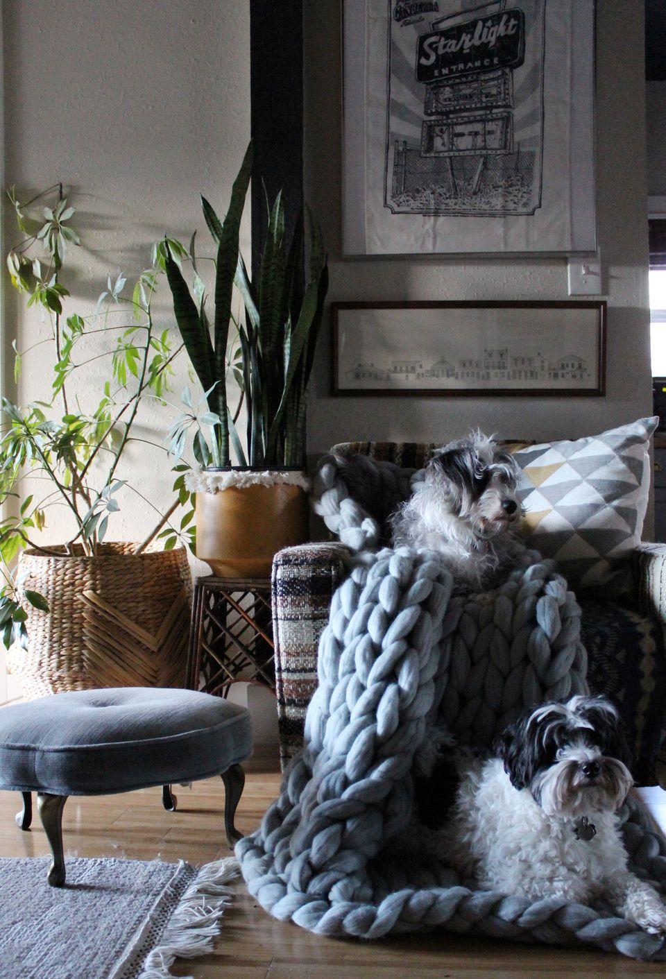 House Tour A Portland Stylist S Creative Abode
