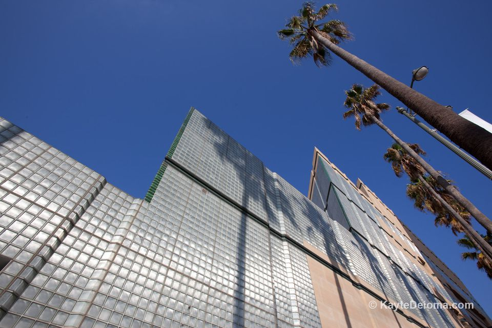 Outside of LA County Museum of Art and palm trees