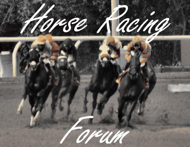 horse racing forum