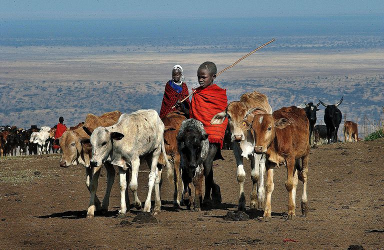 Threatened By Eco-Tourism, the Maasai Peop...