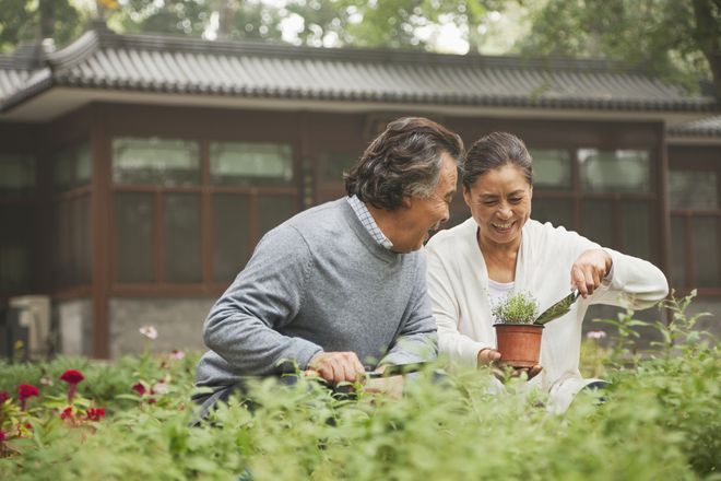 Older couple gardening