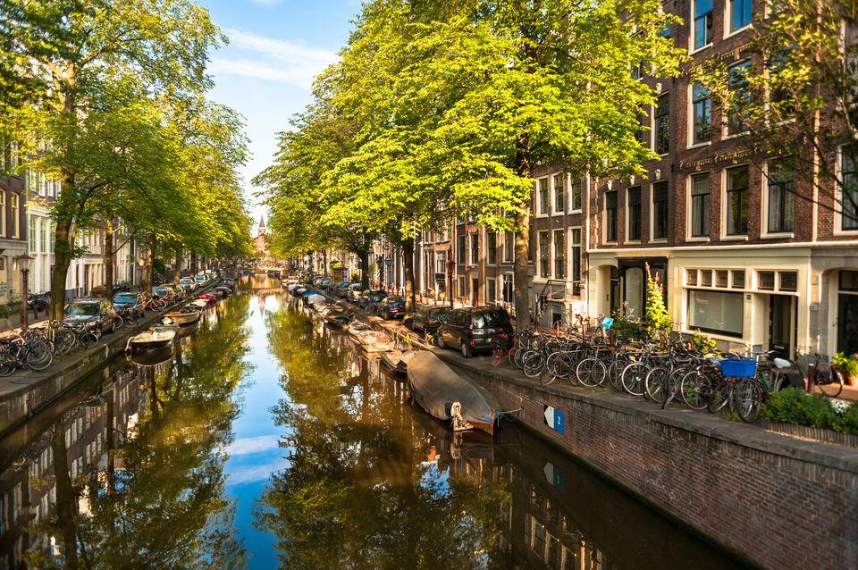 Cheap Car Insurance Holland Mi