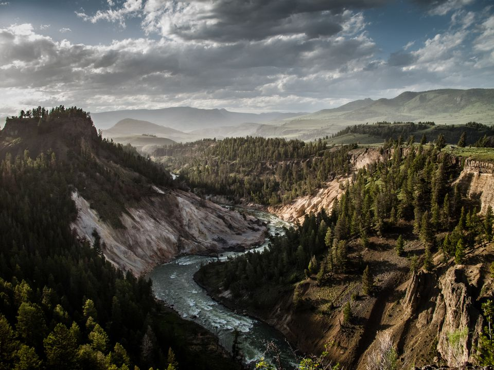 Yellowstone National Park view from an overlook