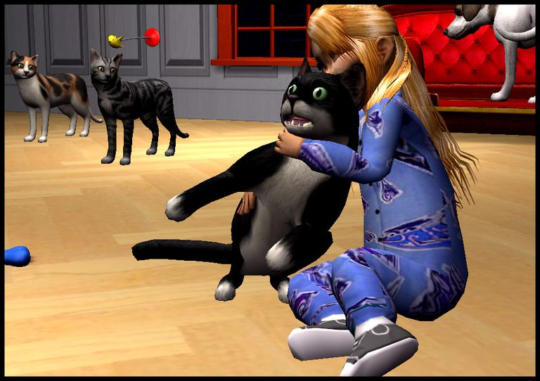 Sims  Cats And Dogs Buying Pet
