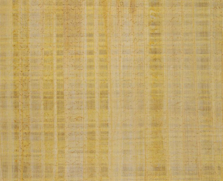 Patterns in papyrus paper, full frame