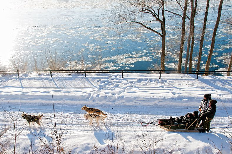 Montreal dog sledding information, rates and answers to your FAQs.