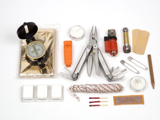 Supply Chain Survival